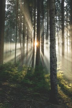 banshy:  Enjoy the Light // Mirko Fikentscher