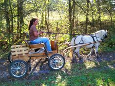 Jerry Ann from buggybobs.com with a miniature horse she just broke to the wagon. WOW!!!