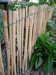 ein zaun federnd d nne zweige mit reben und ringelblumen vor und hinter aus willow fences. Black Bedroom Furniture Sets. Home Design Ideas