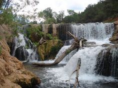 Hiking in Arizona: Hike #42: Fossil Springs Trail, Fossil Springs Wilderness