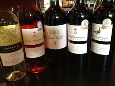 Wine Club selections - April 2012 featuring Patagonia and Mendoza, Argentina
