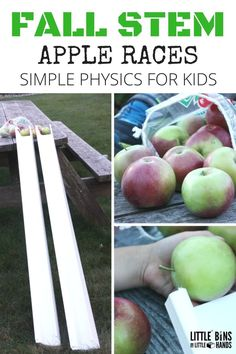 A fun fall STEM and physics activity for preschoolers, kindergartners and first grade with a farm or apple unit! Steam Activities, Preschool Activities, Autumn Activities For Kids, Dementia Activities, Group Activities, Gravity Experiments, Kindergarten Stem, Fall Preschool, Preschool Apples