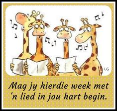 Afrikaanse Quotes, Goeie More, Morning Blessings, Good Morning, Blessed, Comics, Words, Girlfriends, Birthdays
