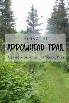 The Arrowhead Trail is a beautiful hiking trail located within Riding Mountain National Park in Manitoba. I hiked this trail for my first time last weekend during my camping trip to… Hiking Tips, Hiking Gear, Riding Mountain National Park, National Forest, Travel Articles, Travel Advice, Travel Tips, Trip To Bora Bora, Hiking Photography