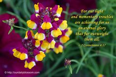 """""""For our light and momentary troubles are achieving for us an eternal glory that far outweighs them all.""""  (2 Corinthians 4:17)"""