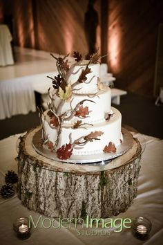 While the tree trunk is a bit tall (makes the cake look small!), we love the contrast between the smooth frosting sides and the flowy natural 3-D fondant branches and leaves.