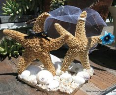 Coastal Wedding Decoration- Sugar Starfish Bride and Groom Alternative Cake Topper Top Man and Woman Starfish with veil and bow tie - product images  of
