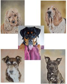 Pastel Artwork, Pastel Paintings, Dog Lover Gifts, Dog Lovers, A6 Size, Christmas Gift Box, Paper Goods, Lion Sculpture, Greeting Cards