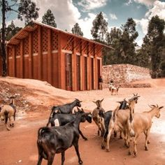 African children's library with rammed  earth walls by BC Architects and Studies