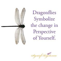 Dragonfly quotes and sayings. Dragonfly Symbolism, Dragonfly Quotes, Dragonfly Art, Dragonfly Tattoo, Dragonfly Meaning Spiritual, Dragonfly Images, Meant To Be Quotes, Change Quotes, Statements