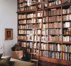 I think it would be lovely to have a wall of books in my home... Vintage library ladder included.