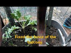 Fixed the fence of the balcony