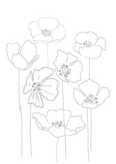 Line Drawing Poppy Flower Line Drawing Poppy Flower. Line Drawing Poppy Flower. Simple Poppy Drawing Simple Poppy Drawing Keywords in poppy flower drawing Poppies Art Floral, Motif Floral, Poppy Drawing, Floral Drawing, Flower Drawings, Simple Flower Drawing, Botanical Line Drawing, Watercolor Flowers, Watercolor Art