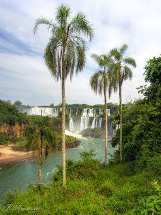Brasil 2015 - Caraguatatuba, São Paulo, Foz do Iguaçu - Iguaçu falls