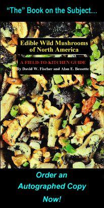 Edible Wild Mushrooms, Photos, Identification, Descriptions - David Fischer's AmericanMushrooms.com BASED IN SYRACUSE, NY