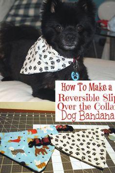 Dog Harness, Dog Leash, Dog Clothes Patterns, Pet Clothes, Dog Clothing, Dog Hoodie, Dog Sweaters, Dog Bandana, Dog Coats