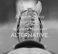 Art Of Equitation – Art Of Equitation Equine Quotes, Equestrian Quotes, Equestrian Problems, Cute Horses, Beautiful Horses, Funny Horses, Inspirational Horse Quotes, Horse Riding Quotes, Horse Girl Quotes