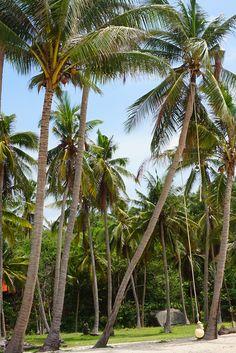 Haad Than Sadet Beach, Koh Phangan, Thailand