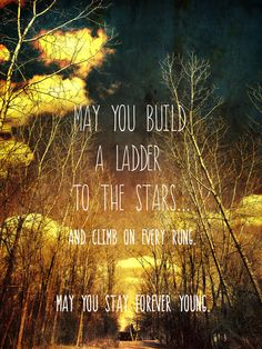May You Stay Forever Young Art Print, quote, trees, nature, photography