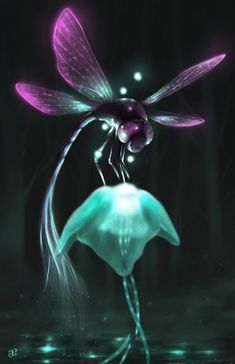 I found you Picture  (2d, fantasy, jellyfish, dragonfly)