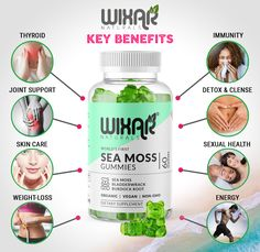 Learn to (do) Irish Sea Moss Like a Professional Class Tools, Irish Sea, Sea Moss, Lost Money, Gummy Bears, Things To Sell, 3 Things, The Help, How To Become