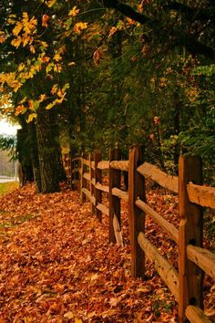 Split Rail Autumn Fence.