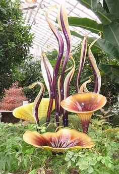 Dale Chihuly art at Pittsburgh Phipps Conservatory