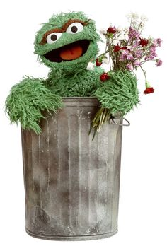 Oscar the Grouch was (and still is) my favorite Sesame Street character. Something about him living in that can and having a sassy attitude always sat well with me.  And of course the green color.