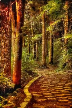 Astonishing Photos of Marvelous Places Around the World (Part Stone Path Hakone, Kanagawa, Japão. Foto Nature, All Nature, Amazing Nature, Beautiful World, Beautiful Places, Beautiful Roads, Beautiful Forest, Places Around The World, Around The Worlds