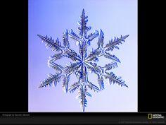 Fiocco di neve dendritico Fotografia di Kenneth Libbrecht