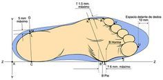 fichas tecnicas de calzado - Buscar con Google