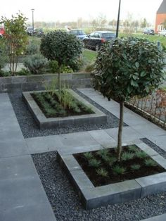 Small modern front garden 175 - Small modern front garden 175 From garden design to . Small Front Gardens, Back Gardens, Outdoor Gardens, Contemporary Garden Design, Garden Modern, Cottage Garden Design, Garden Edging, Exterior, Garden Care