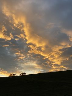 The sunset reflected on the clouds swirling above Williamston Barns. Luxury Holiday Cottages, Holiday Accommodation, Luxury Holidays, Barns, Wilderness, Natural Beauty, England, Clouds, Sunset