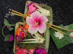 Bali - small daily offerings of flowers and food—left in front of homes, shops, and temples by Balinese Hindus— are seen all over the island.   photo by Cary Miller