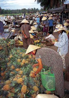 Classic vietnam & angkor - Vietnam - Vietnam is constantly surprising. The landscapes of vibrant green rice paddies, limestone sea cliffs and great rivers provide a backdrop to a culture that is as tenacious as it is fascinating