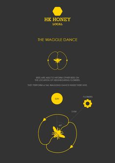In 1973 Karl von Frisch received a Nobel Prize for discovering the waggle dance.