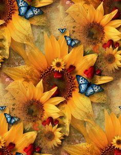 girasol y mariposa