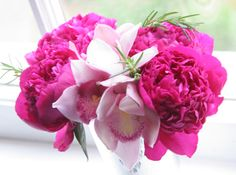 oh roses you have never stood a chance, pianese, orchids, tulips and hydrangeas are where its at for me