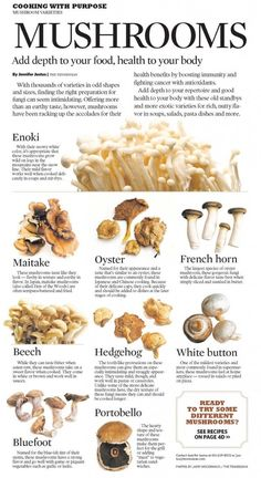 They do this because this is the easiest way to grow mushrooms. But if you are thinking of growing mushrooms commercially Edible Mushrooms, Stuffed Mushrooms, Culture Champignon, Mushroom Varieties, Cooking Tips, Cooking Recipes, Growing Mushrooms, Food Charts, Food And Drink