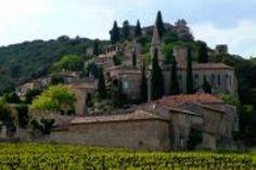 vignobles des côtes du Rhone - La Roque sur Cèze- France.