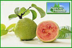 As 6 Melhores Frutas para Diabéticos