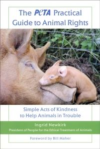 Why Animal Rights? #teachkindness #practicalguidetoanimalrights