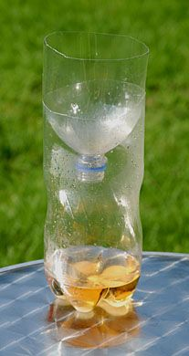 bee-safe-wasp-trap-cut-tip-off 2 liter and fill bottom with mixture of vinegar, sugar and salt. The wasps are attracted to the sweet and sour scent yet bees don't seem to be attracted by this sour mixture whereas a honey mix would be a fatal attractant Wasp Traps, Bee Traps, Wasp Catcher, Bee Catcher, Homemade Wasp Trap, Make Your Own, Make It Yourself, How To Make, How To Kill Bees