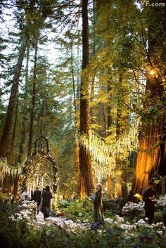Medieval fantasy wedding in Big Sur, CA. This looks so enchanting. Sean Parker's wedding. The forest area cost 4.5 million..wow.