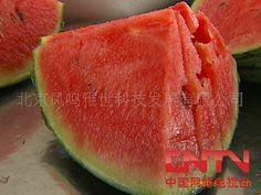 [Visit to Buy] Beyond the dreams of pocket health vegetable seeds watermelon 20 seeds #Advertisement