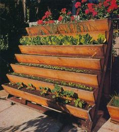 Gardening with no yard. This would go great on the side of a house.