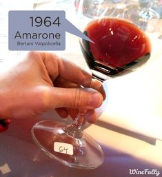 Amarone Wine: The Patriarch of Valpolicella.   ... http://scotfin.com/scot-fin-novel/ asks, Yes, why? This could become an expensive addiction.