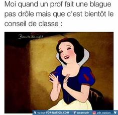 mdrrrrrrrrrrrrrrrrrrrrrrrrrr wallah c la veriter Tequila, Funny Images, Funny Pictures, Selfie Captions, Funny French, Some Jokes, Funny Tweets, Funny Posts, Disney Memes