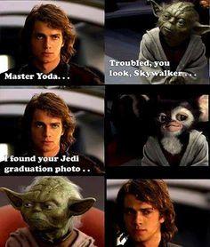 Master Yoda...