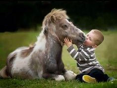 Cutest photo of the day ...Little boy playing with his beautiful friend horse :) #LOVE #SMILE